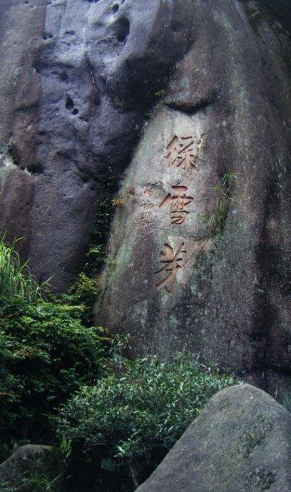 寻找白茶发源于福鼎太姥山证据